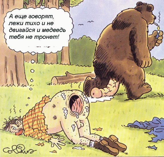 http://pics.binary.ru/bear.jpg