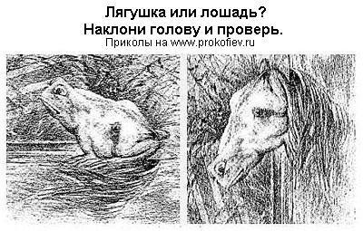 http://www.prokofiev.ru/prikol/pics/p12/ilusao6.jpg