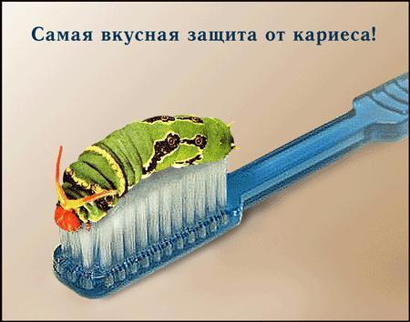 http://www.edentworld.ru/publ/pic/humor/042.jpg