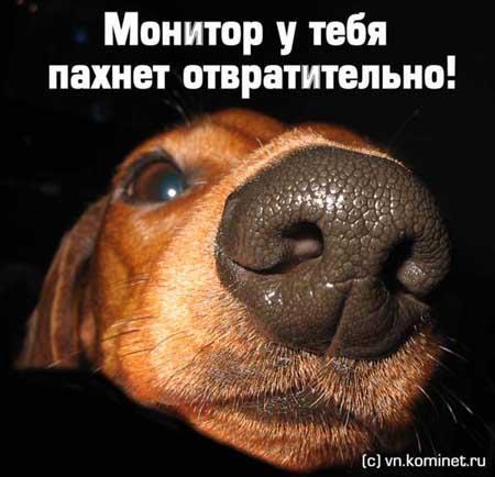 http://www.libo.ru/ind/graf1/3290.jpg