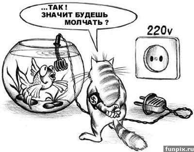 http://www.liveinternet.ru/images/attach/704443/1059598.jpg