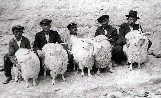 Смешные картинки азербайджанцы, картинки люди
