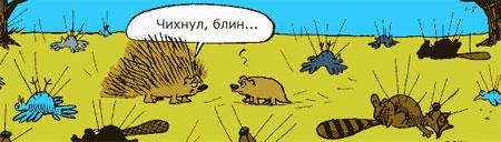 http://www.rapira.ru/docs/im/file70663.jpg