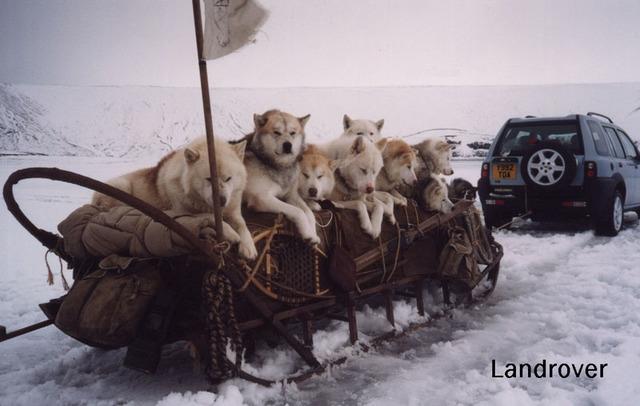 http://bestpics.ru/full/Landrover-and-mals.jpeg