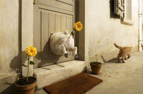http://www.nnm.ru/imagez/gallery/doci/bri/brilliantovui_doc-1148281447_i_3677.jpg
