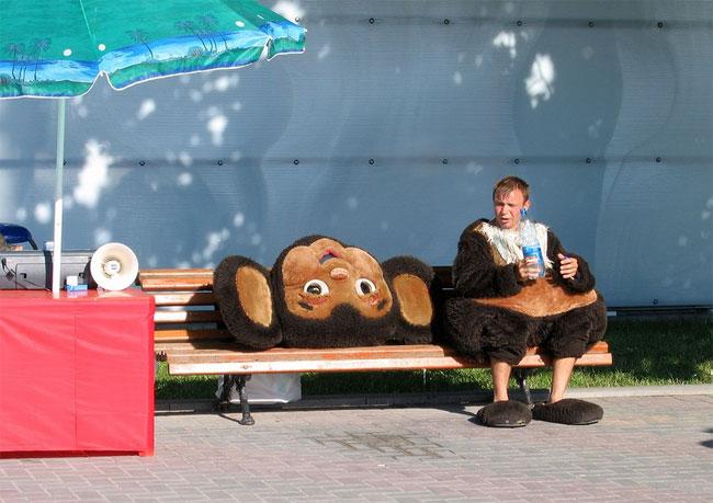 http://ziza.ru/other/072006/12/cheburashka.jpg