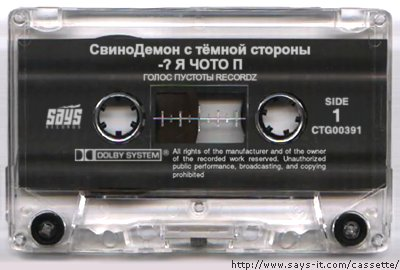 http://img517.imageshack.us/img517/1971/cassettefz5.jpg