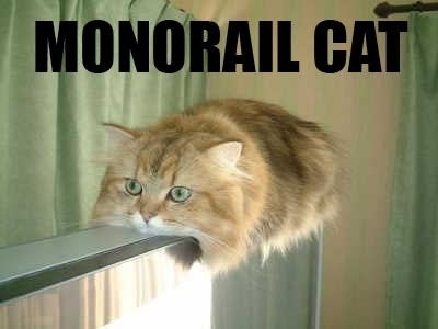http://i34.photobucket.com/albums/d142/taraisagoddess/monorail-cat.jpg