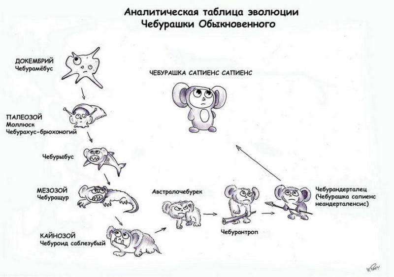 http://de.fishki.net/picsw/cheburashka.jpg