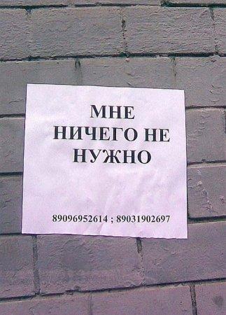 http://www.lionblog.net.ru/uploads/posts/thumbs/1181801970_untitled.jpg