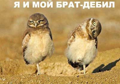 http://v.foto.radikal.ru/0703/64/f4ffeb5606a8.jpg