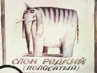 http://pix.lenta.ru/news/2007/08/30/elephant/picture.jpg
