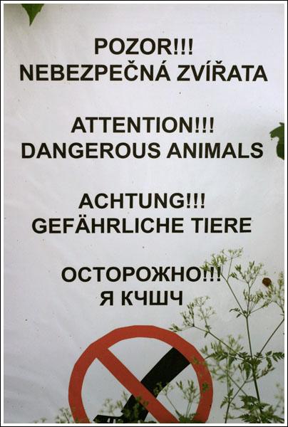 http://anton.exler.ru/pics/2007-05-Praha/IMG_8247.jpg