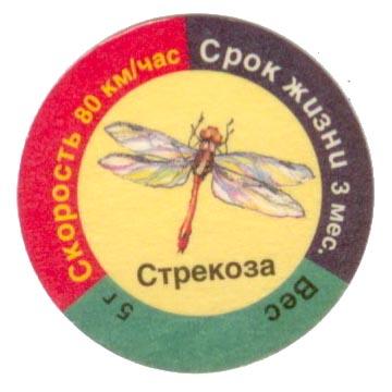 http://i10.photobucket.com/albums/a139/k04r/dragonfly.jpg