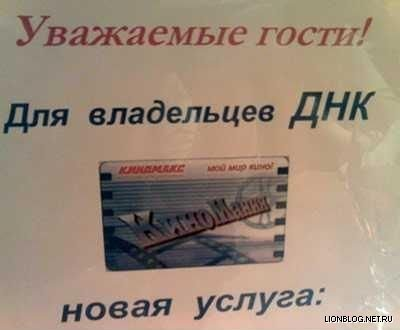 http://www.lionblog.net.ru/uploads/posts/2008-11/1225880484_dnk.jpg