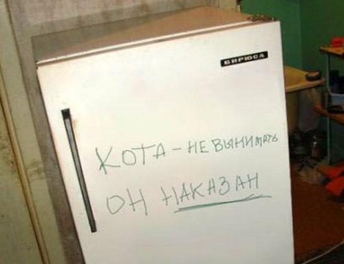 http://pit.dirty.ru/dirty/1/2009/02/11/22382-205121-cd6a034b13f97e1ac8f6597c8c3cf4b9.jpg