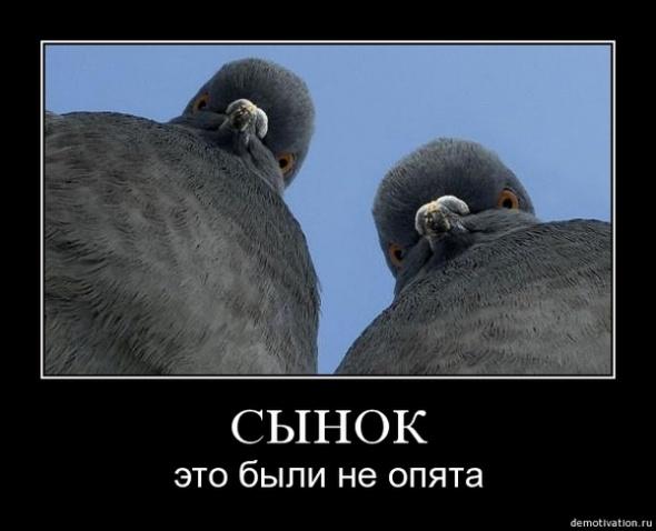 http://img.otvali.ru/2009/02/podborka-demotivatorov_33719_s__1.jpg