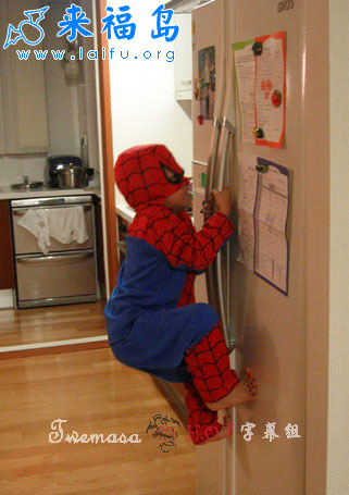 http://www.liewcf.com/blog/wp-content/uploads/spiderman-training.jpg