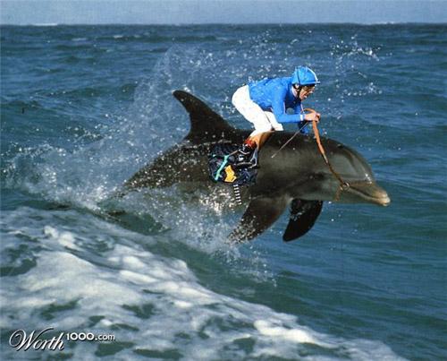 http://www.1stwebdesigner.com/wp-content/uploads/2009/04/photoshopped/dolphin-racing-photomanipulation.jpg