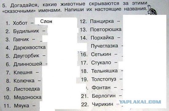 http://i076.radikal.ru/1001/58/b4c5b13d54a6.jpg