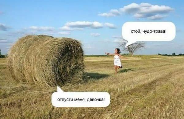 http://www.ljplus.ru/img4/w/i/wilwet/x_8263cc5a.jpg
