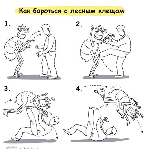 http://img-kiev.fotki.yandex.ru/get/3804/elkin99.e/0_390a7_4e080b08_XL.jpg