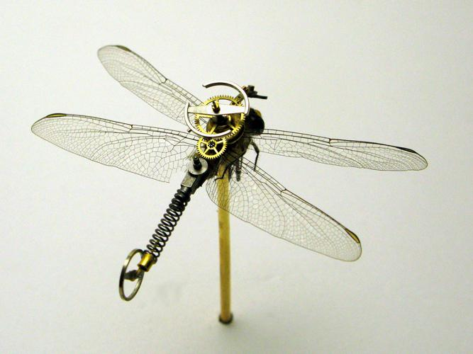 http://www.t-l-k.com/images/habr/insects/2009SmallDragon.jpg