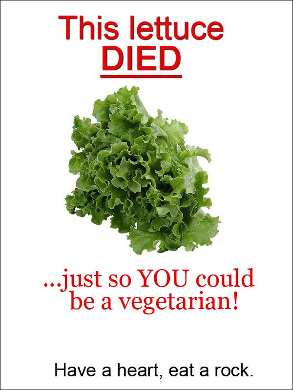 http://www.eatliver.com/img/2010/5862.jpg