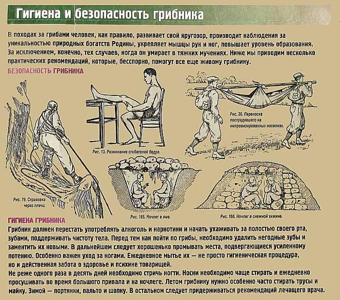 http://zhurnal-stolitsa.narod.ru/stl_grb04.jpg