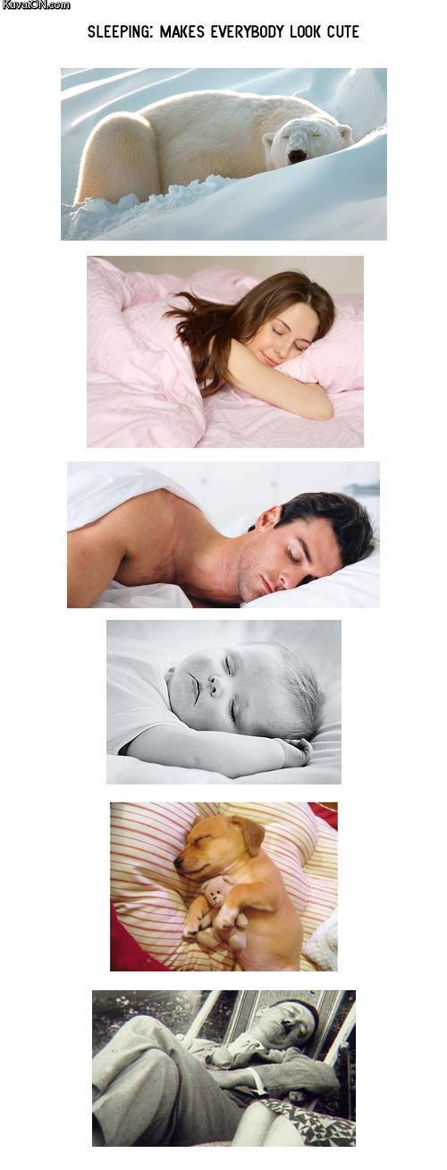 http://pics.kuvaton.com/kuvei/sleeping_makes_everybody_look_cute.jpg