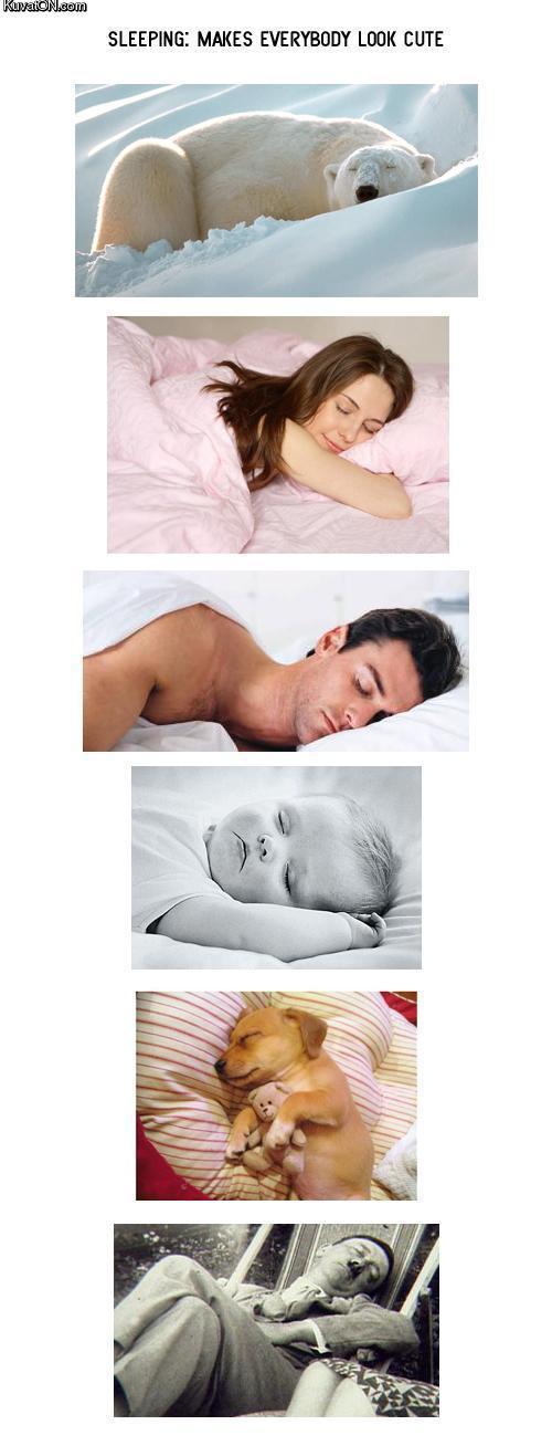 http://pics.kuvaton.com/kuvei/sleeping_makes_everybody_look_cute.jpg