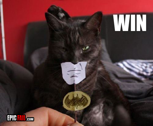 http://pic.epicfail.com/wp-content/uploads/2010/11/instant-batman-costume-win.jpg