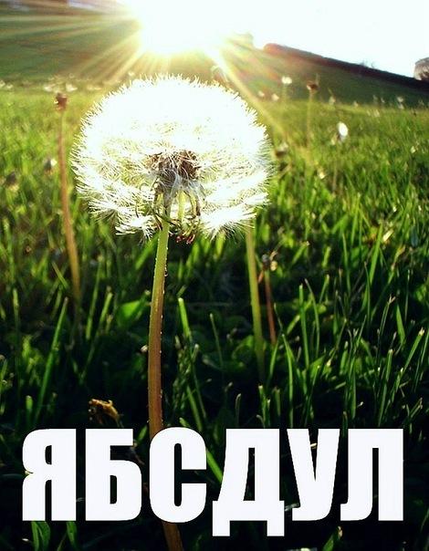 http://cs5864.vkontakte.ru/u123342852/128955116/x_0b348470.jpg