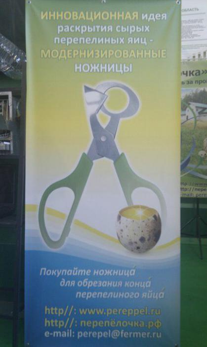 http://img12.nnm.ru/9/6/f/9/b/57d269f3f9ea559d83a99f4f8d0_prev.jpg