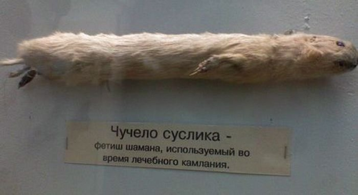 http://www.porjati.ru/uploads/posts/2011-09/1315809957_podborka_72.jpg