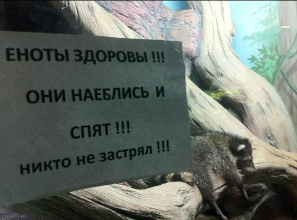http://s48.radikal.ru/i120/1111/3e/aba83e639f15.jpg