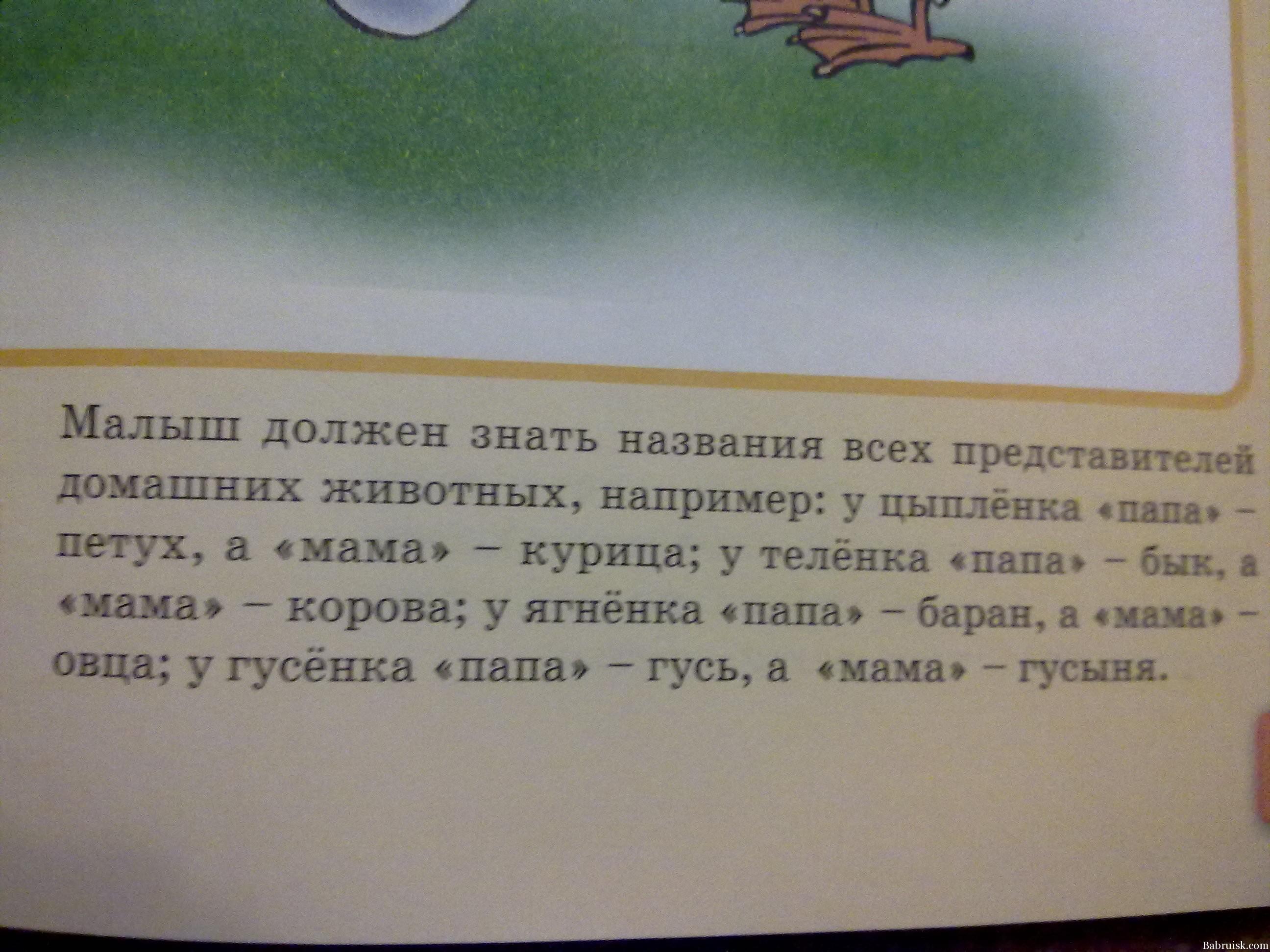 http://babruisk.com/wp-content/uploads/2012/02/09022012479.jpg