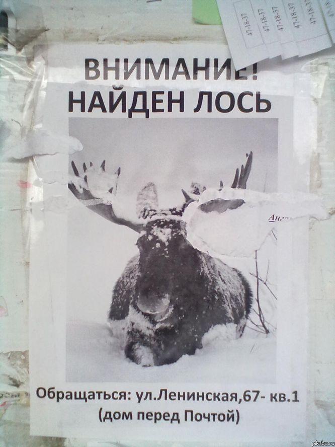 http://apikabu.ru/img_n/2012-03_3/jte.jpg