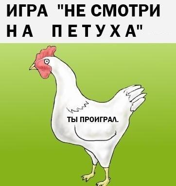 2012_10_23_12_43_cs304712_userapi_com_v304712995_4d80_5L1CXf51fdA.jpg