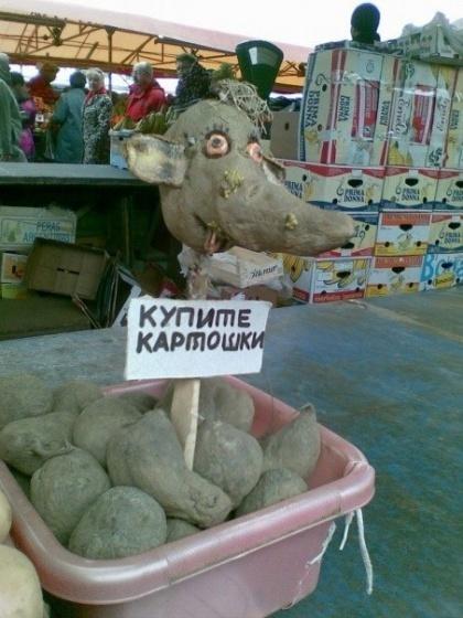 http://a3.tcdn.ru/assets/att/6b/d9/11528999_0_0_85cb34d261ecf02182683a01.jpg