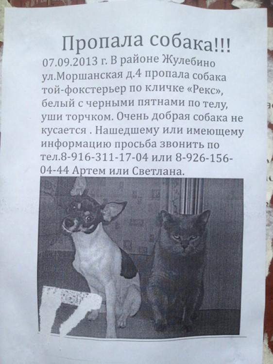 http://www.libo.ru/up/8585/131017021019_521789_original.jpg