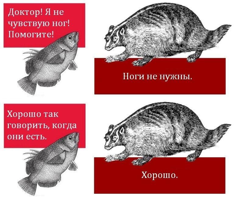 2013_12_11_15_33_514937_1.jpeg