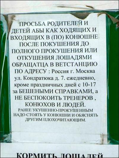 http://infoglaz.ru/wp-content/uploads/nadpisi-11102014-015.jpg