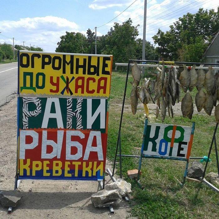 http://s018.radikal.ru/i524/1501/3a/c888ab169ffa.jpg