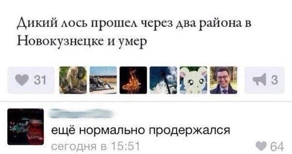 http://cs624922.vk.me/v624922092/14f85/fjE0qOosZLw.jpg