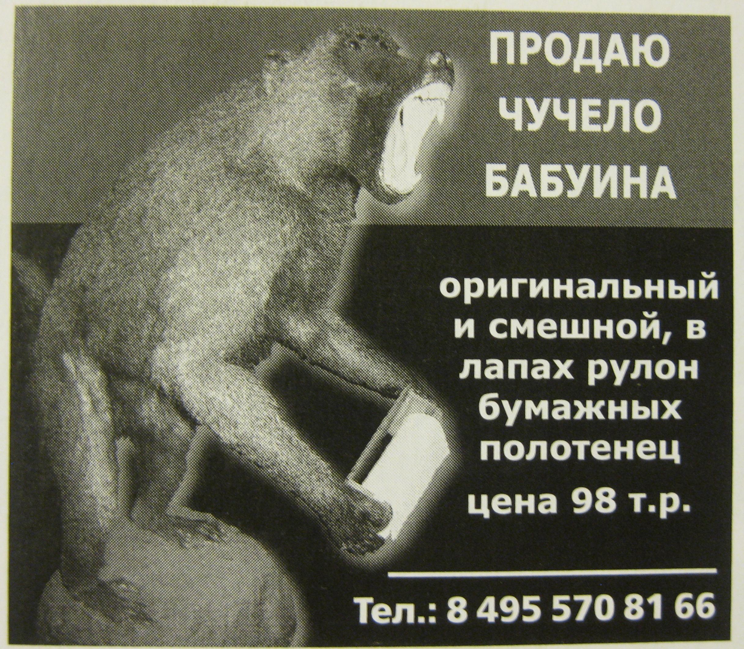 http://std3.ru/c1/48/1422805797-c1482db2a358f7b00039b7a9e7fc686f.JPG