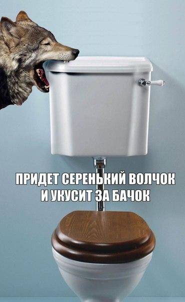 http://img12.nnm.me/5/8/c/8/6/e62e6685fffa2f2d5b5bdcb2ed6.jpg