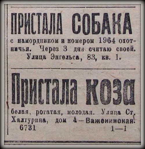 http://s34-temporary-files.radikal.ru/680e198a31034ef3880ab3d1b51b2d25/-88693455.jpg