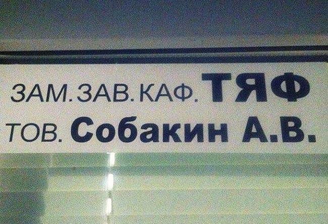 http://pp.vk.me/c622227/v622227654/220a2/pA--aFMBZfc.jpg