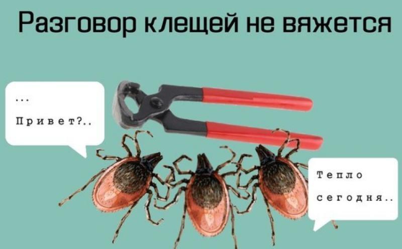 http://cs624418.vk.me/v624418398/253a2/Jy-zJcqQEMQ.jpg